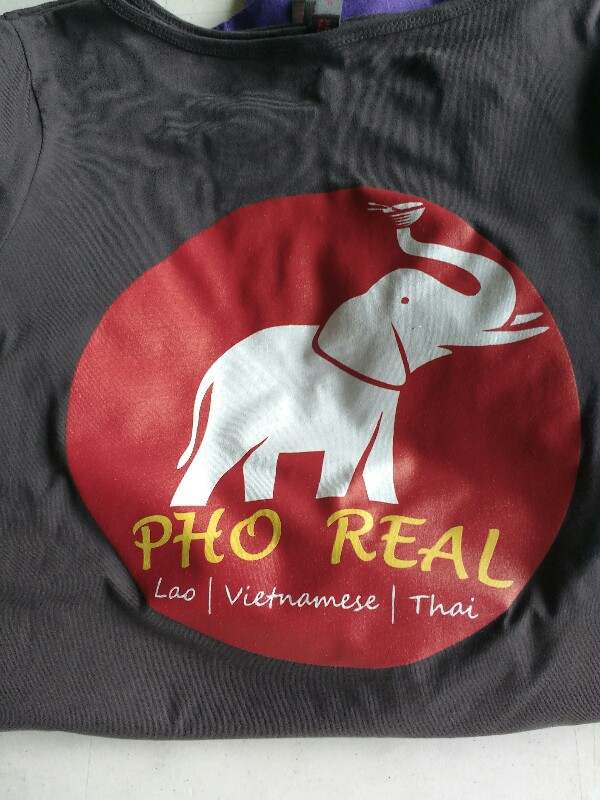 Pho real ICS Inks Screen Printing